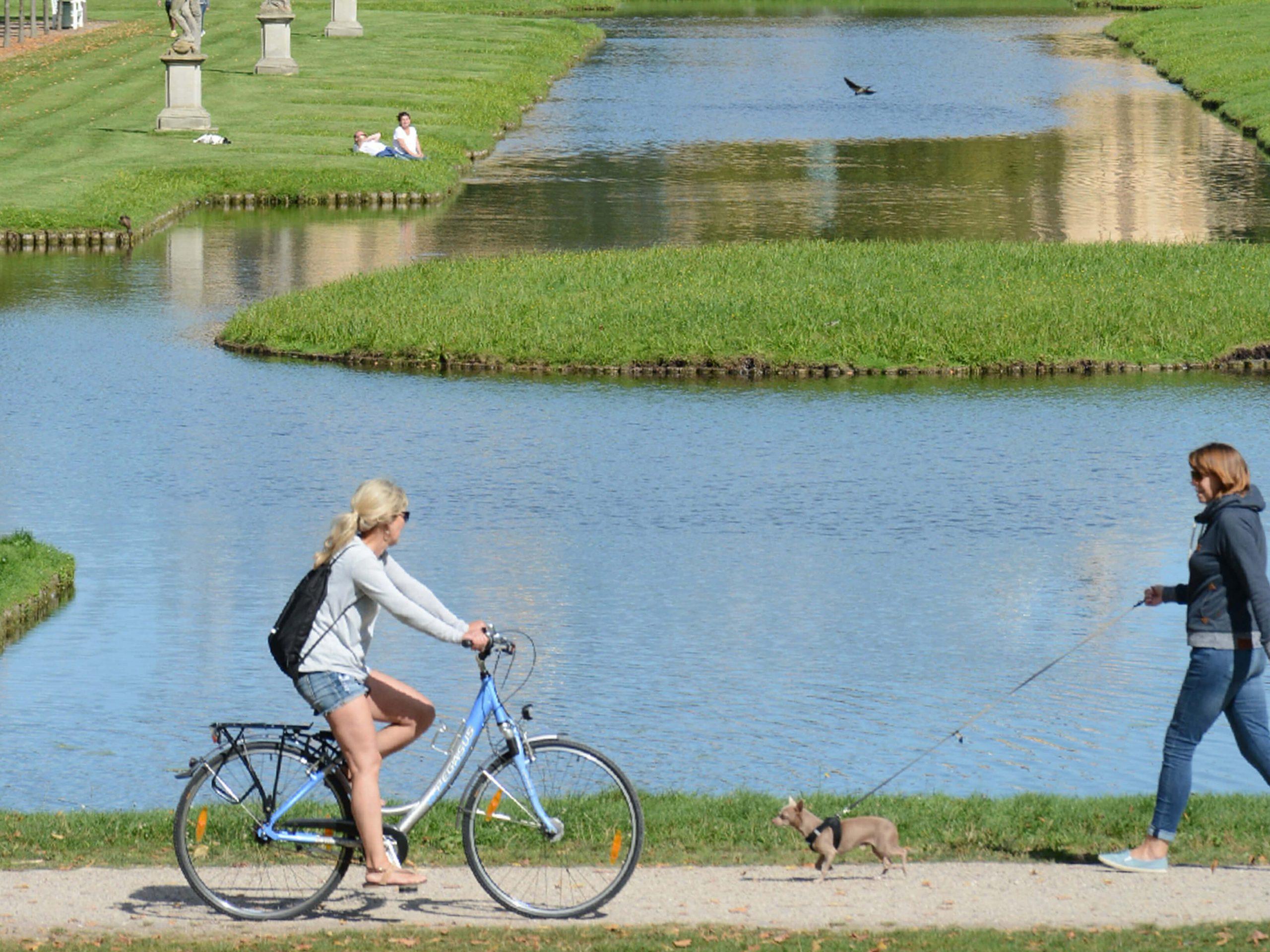 Unsere BHF-Laufgruppe nutzt den Schlosspark und nimmt gerne an Jedermann-Rennen teil. Foto: BHF.