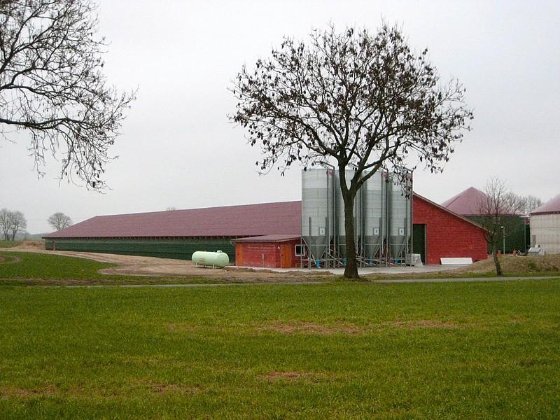 Zarchlin, Hähnchenmast- und Biogasanlage