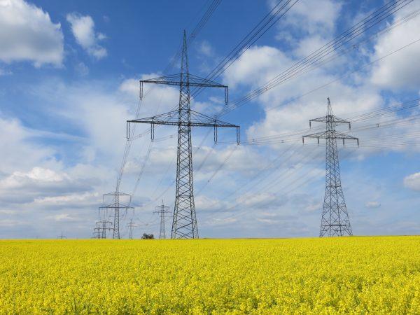 Bundesfachplanung 380-kV-Höchstspannungsleitung Röhrsdorf – Weida – Remptendorf (BBPlG Nr. 14), 2019